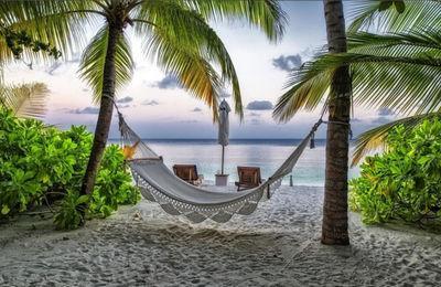 Правила предоставления ежегодного оплачиваемого отпуска